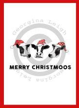 Cows Christmas Card